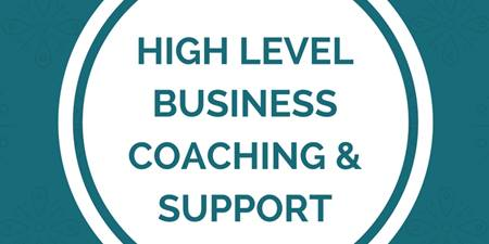 High Level Business Coaching and Support